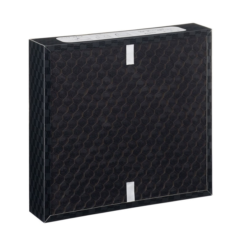 Replacement filter for AP-C300/310