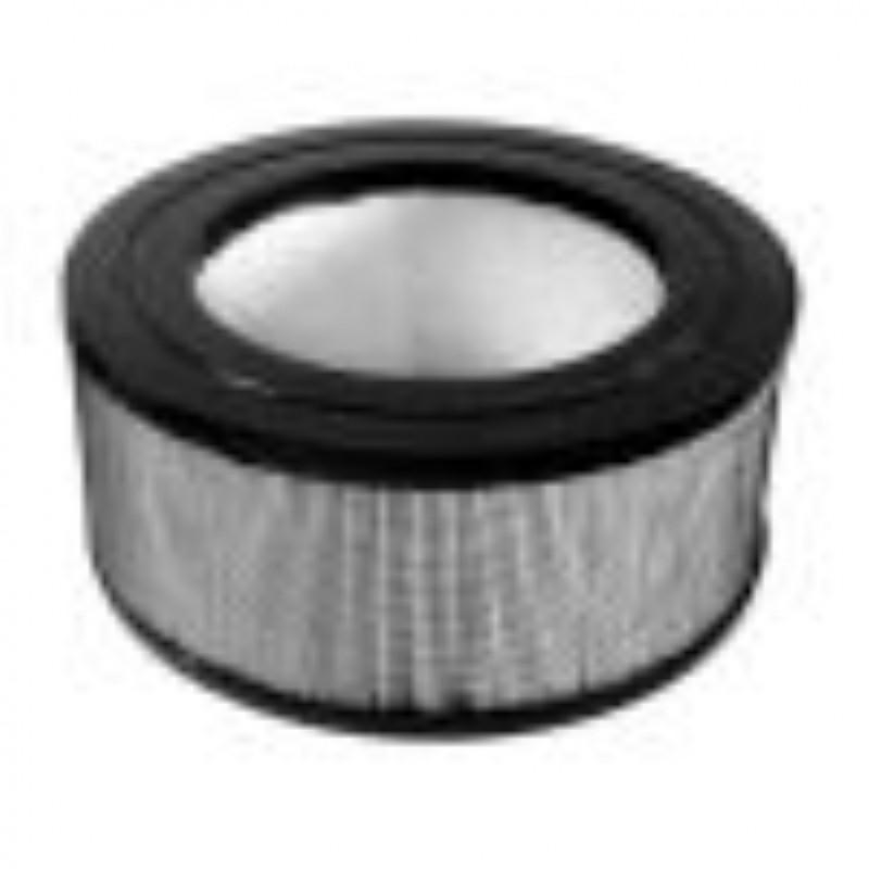 True Hepa filter for 17250/18250